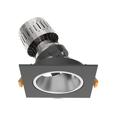 Modular D2 Light